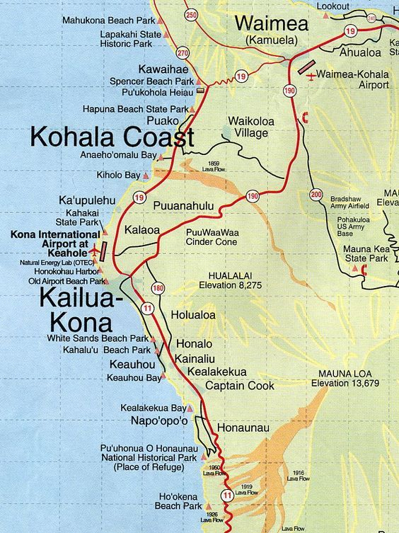 Kona Market Report May 2020